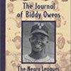 The Journal Of Biddy Owens (My Name Is America)