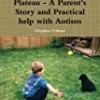 Beyond the Autistic Plateau