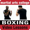 Boxing Lessons 1