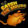 Catch The Mouse Cat Game