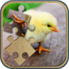 Cute Animals Jigsaw Puzzle