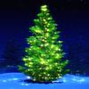 Christmas Music Songs