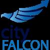 City Falcon Blog