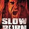 Slow Burn: Infected (Slow Burn Series)