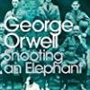 Shooting An Elephant