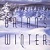 Brian's Winter (Brian's Saga)