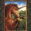 The Road to Balinor (Unicorns of Balinor)