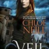 The Veil (Devil's Isle)