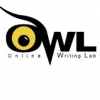 OWL: Writing Report Abstracts