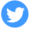 Twitter Video Downloader
