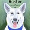 Buster the Treasure Hunter Dog