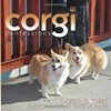 Corgi Confessions