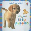 Little Book of Little Puppies (Baby's Very First)