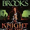 A Knight of the Word (The Word and the Void Trilogy)