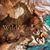 The Wild Ways (The Enchantment Emporium)