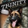 Trinity (A Breed Apart)