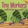 Tiny Workers: Ants In Your Backyard (Backyard Bugs)