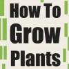 [TUTORIAL] How To Grow Plants: The Ultimate Guide To Planting Seeds And Plant Care
