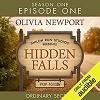Hidden Falls: Ordinary Secrets