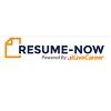 .Net Developer Resume Sample - Resume-now