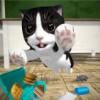 Cat Simulator - and friend
