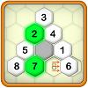 Hexa Puzzle