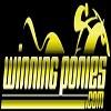 Winning Ponies