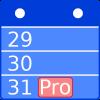 The Calendar Pro