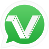 Video Download for Whatsapp