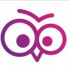 CV Owl