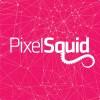 PixelSquid