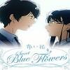 Aoi Hana (Sweet Blue Flowers)