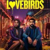 The Loverbirds