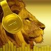 Amazing Quality Equalizer - SuperLoud Essential