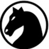 ChessNetwork Channel